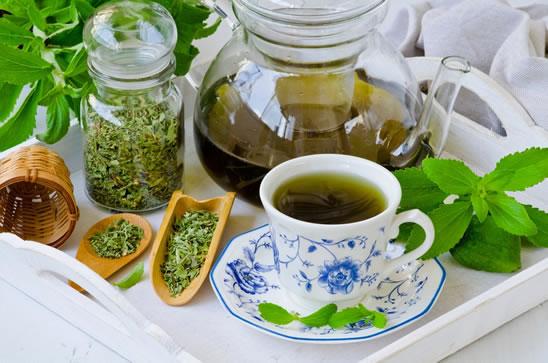 Stevia dolcificante Bio Mondo